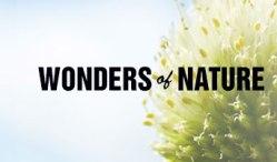 wonders-of-nature_thumb