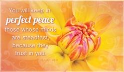 perfect-peace-2-550x320